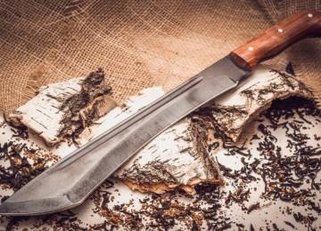 Мачете: как весьма полезный инструмент стал оружием