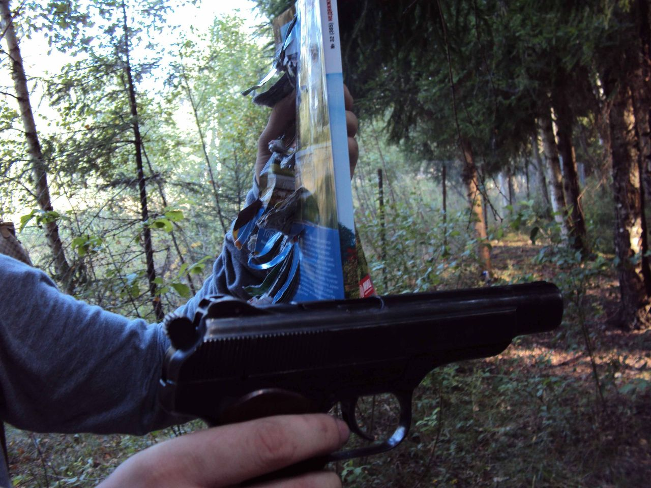 Результаты стрельбы из МР-355