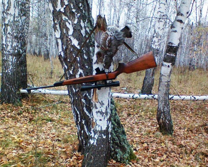 ТОЗ-78 на охоте