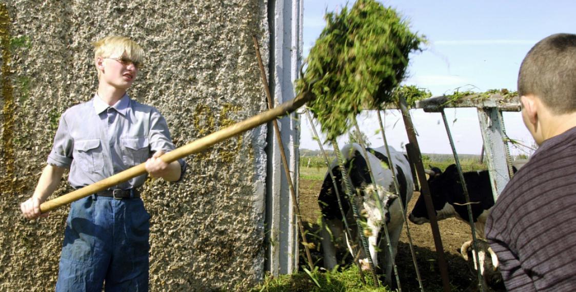 АГС на ферме