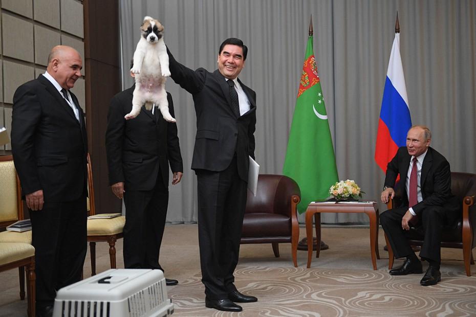 Президент Туркмении с собакой